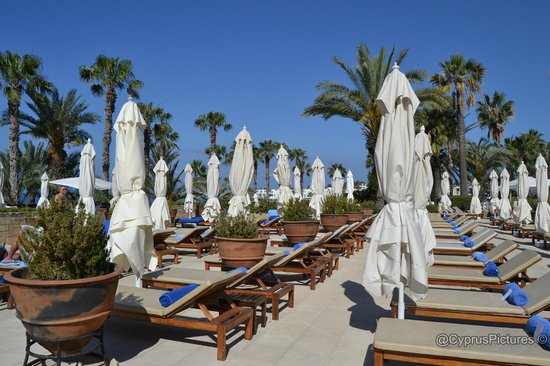 The Annabelle: Sunloungers and umbrellas galore!