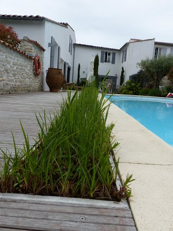 La Maison au Figuier : piscine