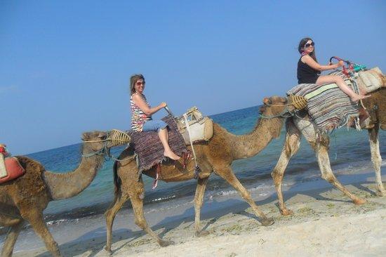 Marhaba Palace Hotel : Camel ride on the beach