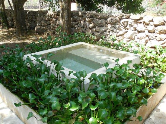 Hotel Hacienda San Francisco Tzacalha : Suite plunge pool