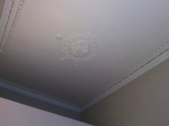 Albany House: The ceiling detail of #102, one of the back rooms on first floor.