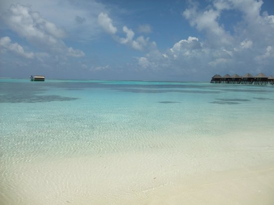 Olhuveli Beach & Spa Resort : Beaches are pristine