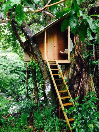 Mermaid's Secret - Riverside Retreat: Toms tree house. I want to stay in here next time !