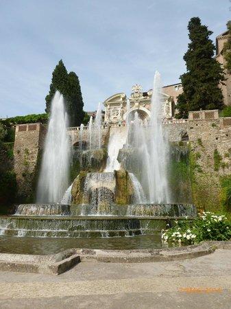 Villa d'Este : Fontana