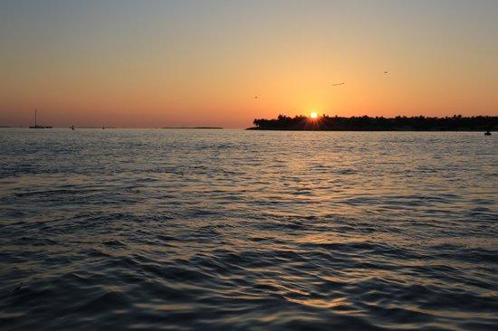 Sunset Pier: Le coucher du soleil, spectacle magique avec parfois des dauphins