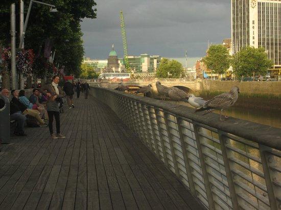 River Liffey: fim de tarde no Liffey