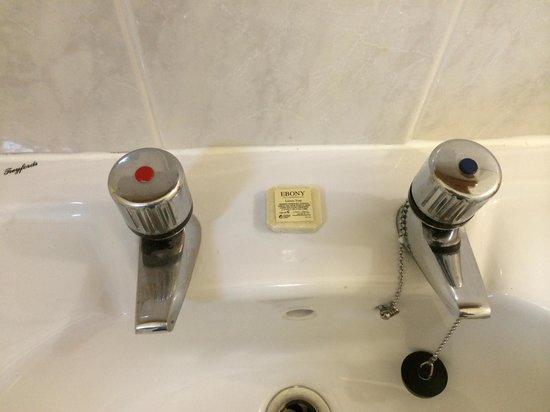 Rosehill House Hotel: Soap provided