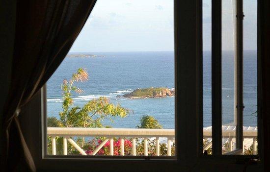 Villa Marbella Suites : View from the Cruzan View room (fantastic!)