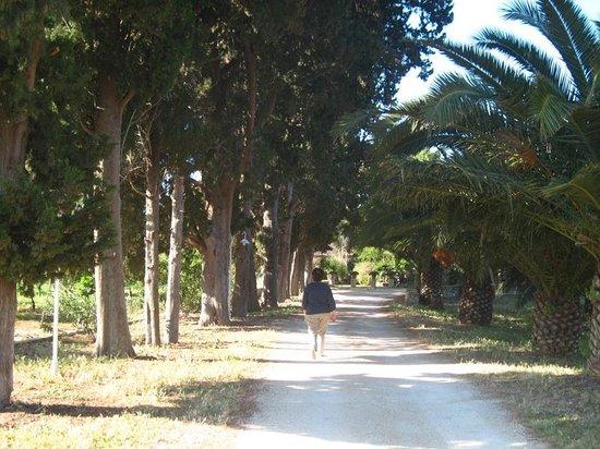 Villa dei Papiri : L'allée qui mène des chambres situées dans des annexes au bâtiment d'accueil