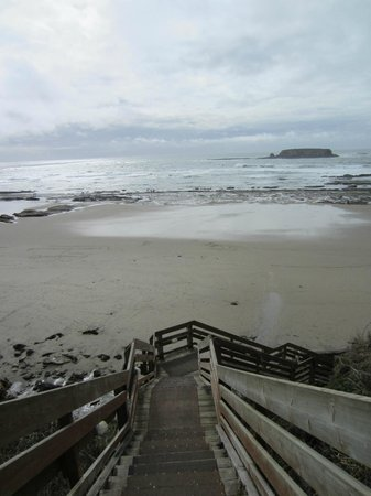 Inn at Otter Crest : Less than 100 steps to glorious tide pools