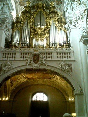 St. Stephen's Cathedral: Orgel.