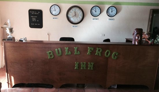 Bull Frog Inn: Reception (most check-ins are at the bar)