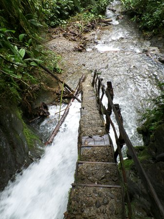 Mindo Nambillo Cloud Forest Reserve: final steps to the waterfall.