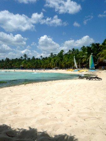 Viva Wyndham Dominicus Beach: Strand