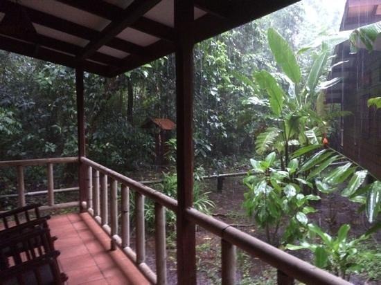 Pachira Lodge: Desde la terraza de mi habitación