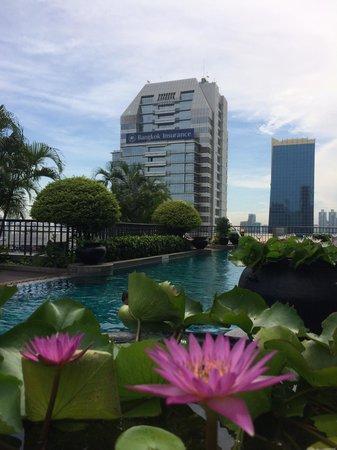 Banyan Tree Bangkok: Pool