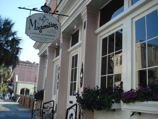 Magnolias: Magnolia's