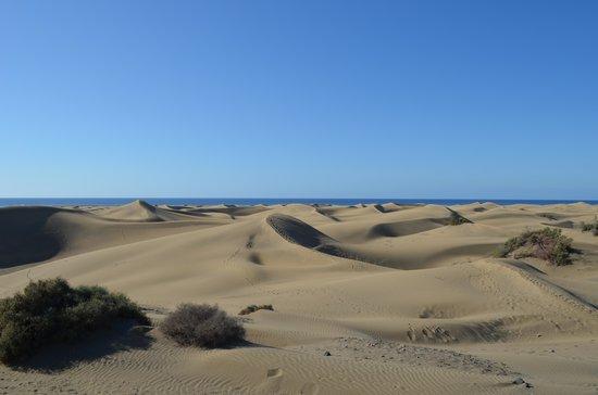 Playa de Maspalomas: Maspalomas 1