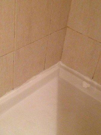 Dreams Punta Cana Resort & Spa: Old Shower Area