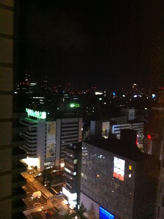 Hotel Nikko Osaka: vue de la chambre