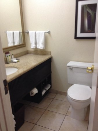 DoubleTree Suites by Hilton Minneapolis: Small bathroom