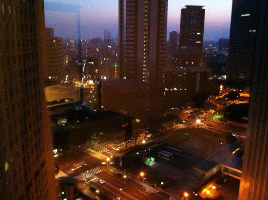Hyatt Regency Tokyo: Vue depuis la chambre au 21ème étage