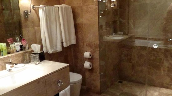 Taj Cape Town: Sink and shower