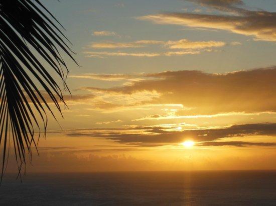 Villa Rose Caraibes : Coucher de soleil depuis la piscine