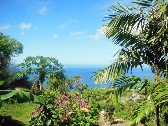 Villa Rose Caraibes : Vue depuis Africa
