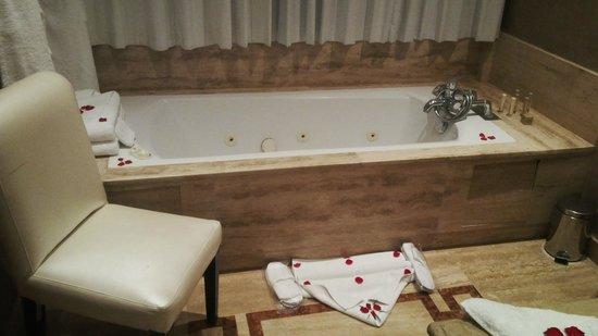Palais Mehdi: bath