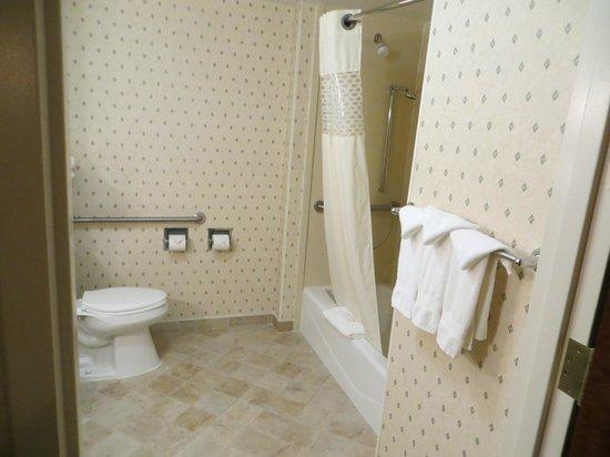 Hampton Inn & Suites Rockville Centre: room