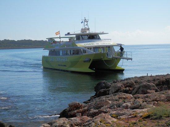 Hotel Palia Sa Coma Playa : Excurtion bateau