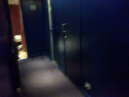 Brunswick Hotel : Dingy corridor