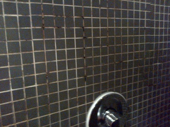 Brunswick Hotel: Filthy Shower