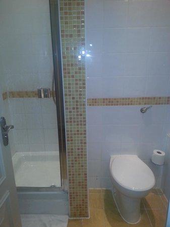 De Vere Horsley Estate: bathroom