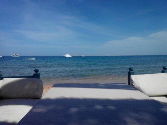Lotus Bay: beach bar