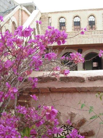 Hotel Salsabil: flores por doquier