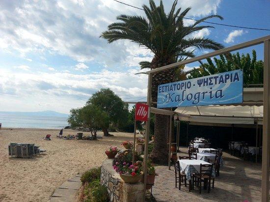 Kalogria Restaurant : Καλόγρια