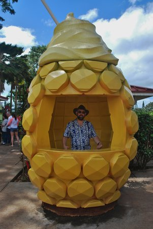 Dole Plantation: Pineapple anyone?