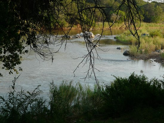 Bushriver Lodge : View