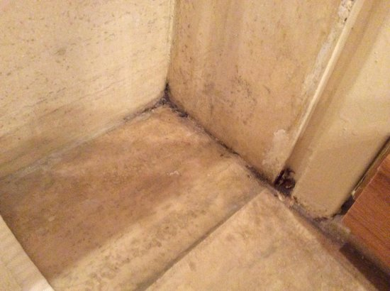 Dan Jerusalem Hotel : Dirty Filthy Room with mildew / mold?