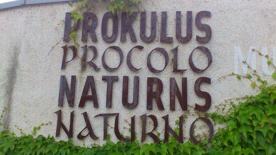 St. Prokolus Kirchlein + Museum: Prokulusmuseum Naturns