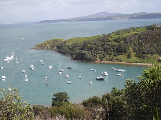 attraction review reviews fullers waiheke explorer tour auckland north island
