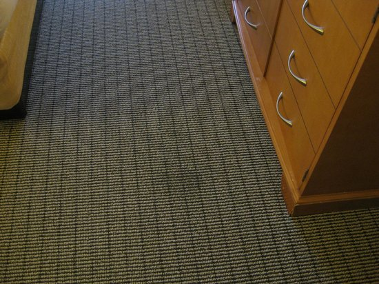 Hilton Clearwater Beach: Stains in carpet