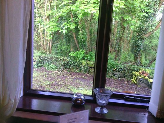 View while eating breakfast at Woodside Lodge, Westport Ireland
