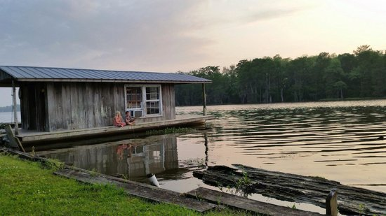 LaBelle Riviere Bed and Breakfast: My babes on the bayou.