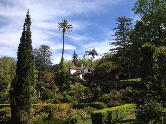 Palheiro Gardens : Le jardin central