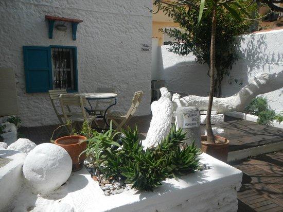 Agla Hotel: garden