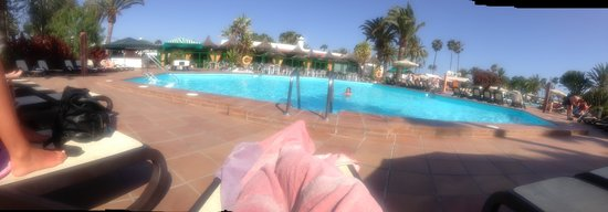 Canary Garden Club: Pool Panogramic