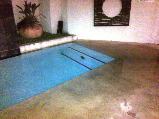 Feathers Lodge Boutique Hotel : Long narrow modern pool in garden - play area for kids